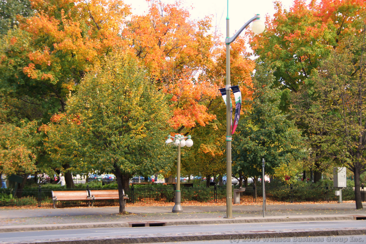 ottawa_fall_2010_33