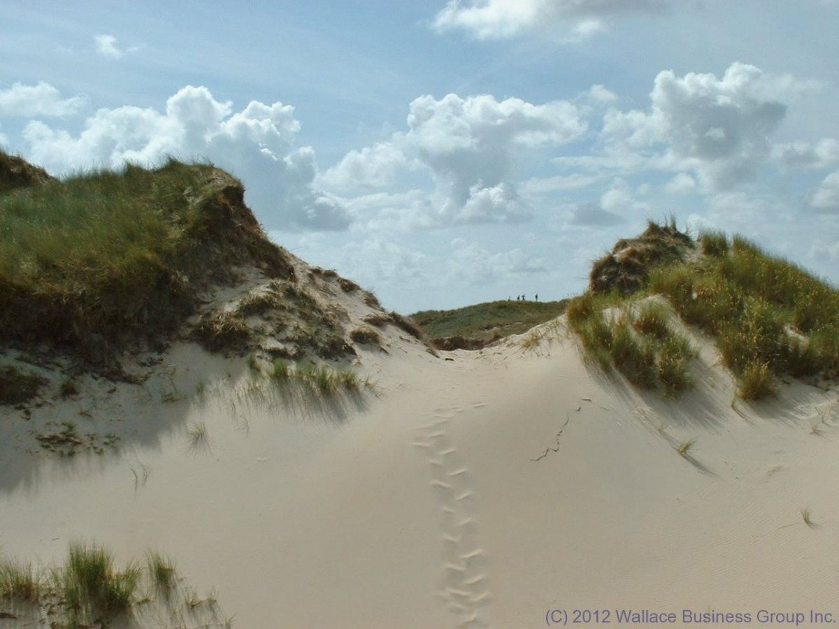 The pristine sand dunes just outside the village of Wittdün auf Amrum, a North Sea Island in Nordfriesland, Germany
